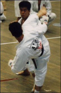 During the 32nd All Japan Karate Shitokai - Championships, Tokyo 1992