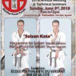 Master Tanzadeh Kata Seminar on Seisan - Nahate Seisan and Shurite Seisan