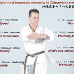 Kyoshi Tanzadeh showing eight most important elements in Okinawan Karate