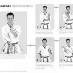 Master Tanzadeh Shitoryu Karatedo 8th Dan Kyoshi performing Mawashi Uke