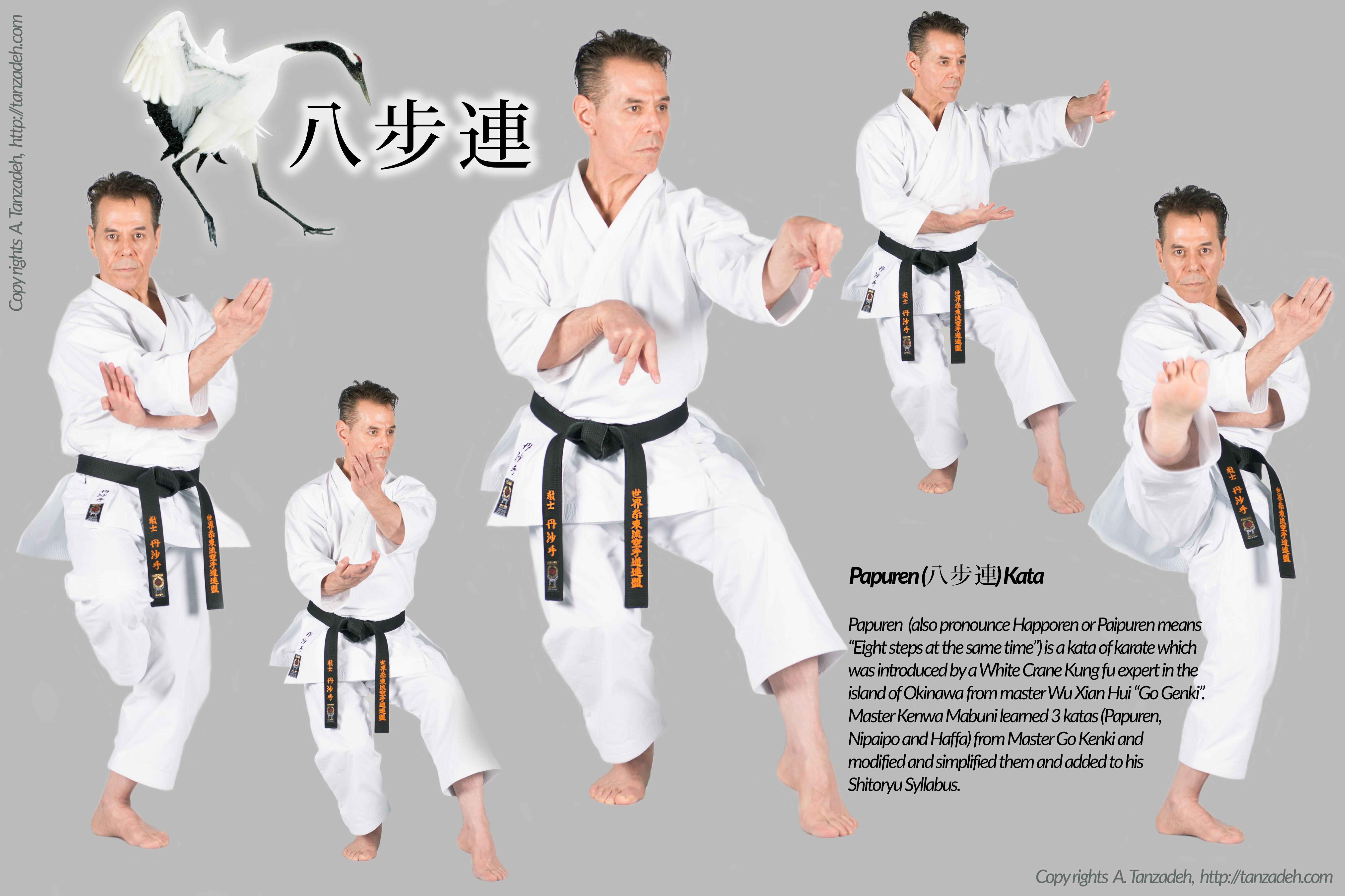 Kyoshi-Tanzadeh-Papuren-Kata-Shitoryu-Karate-8th-Dan