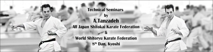 Technical Seminars by Sensei Tanzadeh, All Japan Shitokai and World Shitoryu Karate Federation 8th Dan, Kyoshi